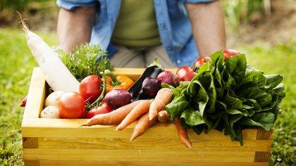 La alimentación es clave en la salud global e impacta de lleno en la expectativa de vida (iStock)
