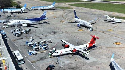 El avión de Avianca en el aeropuerto de la ciudad de Buenos Aires (Adrián Escandar)