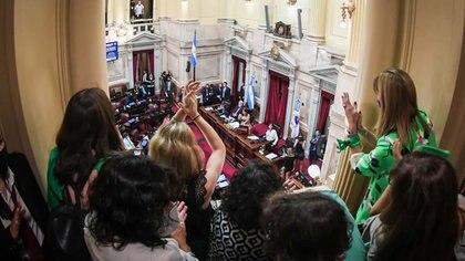 La ley del aborto fue una de las promesas de campaña de Alberto Fernández (Comunicación Senado)