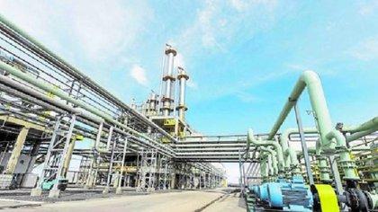 El sector de bioetanol genera unos 500 puestos de trabajo y la producción de biodiesel, unos 2000