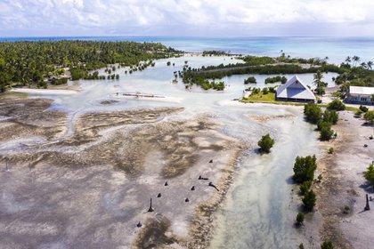 Cien familias solían vivir en la aldea de Tebunginako en la isla de Kiribati, en el Pacífico. Solo quedan tres, ahora que las inundaciones y la severa erosión costera han matado las plantas y han hecho que el agua dulce sea salobre. Esperan trasladarse a tierras más altas.