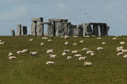 Ovejas rodean el monumento de Stonehenge en Amesbury, uno de los principales destinos turísticos del Reino Unido (REUTERS/Matthew Childs)