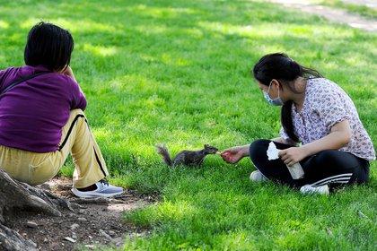 Una mujer alimenta a una ardilla en Washington, Estados Unidos (REUTERS/Mary F. Calvert)