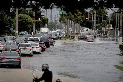 Autos en una calle inundada en Hollywood, Florida. (Susan Stocker/South Florida Sun-Sentinel via AP)