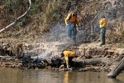 IMAGEN DE ARCHIVO: Un bombero recolecta agua en un humedal en la orilla del río Paraná cerca de la ciudad de San Lorenzo, en la provincia de Santa Fe, Argentina, 28 de agosto de 2020. REUTERS/Agustín Marcarian