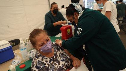 México ha aplicado cerca de 14 millones vacunas contra COVID-19