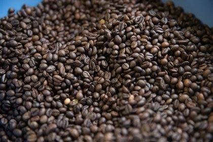 Imagen de archivo de granos de café en una planta de Segafredo Zanetti en Sotteville-les-Rouen, Franci (Reuters)