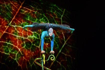 El original espectáculo del Cirque du Soleil se realizó en Sao Paulo . El show agotó todas sus funciones y llegó a vender 75 mil entradas (Foto: Lihueel Althabe)