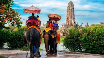El número de turistas que visitan Tailandia se ha duplicado en los últimos diez años, y es fácil entender por qué. Hay literalmente cientos de islas que ofrecen algo para cada tipo de viajero, ya sean las exuberantes selvas de Ko Kut o las aguas cristalinas de Ko Tao