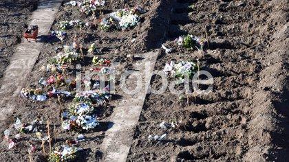 Si no se toman medidas sanitarias, los muertos por covid-19 pueden duplicarse y llegar a los 2 millones. Tumbas para los que fallecieron por coronavirus en el cementerio del Bajo Flores en Buenos Aires, Argentina (Franco Fafasuli)