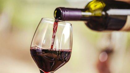 La ingesta elevada de alcohol genera problemas en el cerebro también  (Shutterstock)