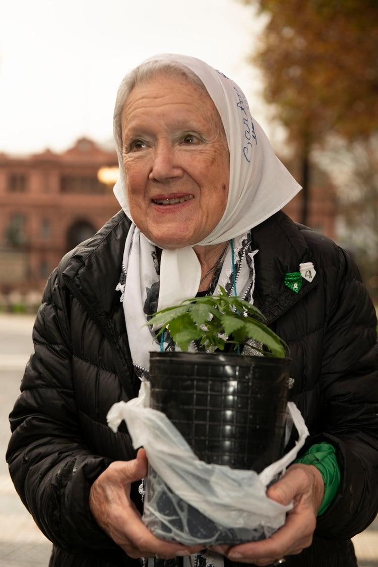 Todo verde: Cortiñas, con su planta de cannabis y el pañuelo por el aborto legal (Gastón Taylor)