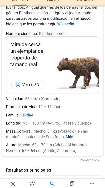 Hay que tipear el nombre del animal y elegir la opción en 3D.