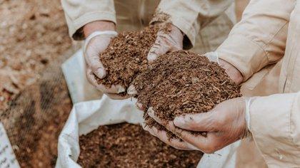 El compostaje es un proceso por el cual se transforma materia biológica en materia orgánica libre de patógenos (Pleia)