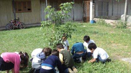 Clase de ciencias naturales en una escuela chaqueña