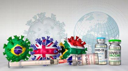 ¿Para qué sirve la vigilancia genómica? (Shutterstock)