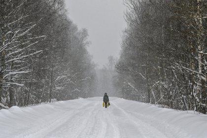 Cerca del pueblo de Lyubuchany, en las afueras de Moscú