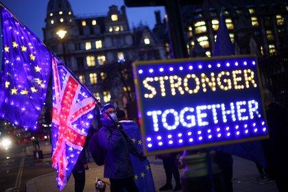 Un manifestante anti-Brexit protestando frente a la Cámara de Representantes en Londres.  REUTERS / Henry Nicholls