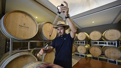 Cómo son los curiosos vinos de altura de Bolivia que sueñan con ganar mercados en el mundo