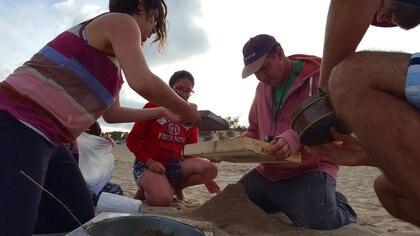 La UBA estudió la contaminación plástica en las playas bonaerenses