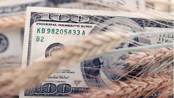 El precio interno de los granos, el valor de la hacienda en pie, y el precio del gasoil, tuvieron comportamientos dispares respecto de la apreciación del dólar. Sin embargo, nunca fueron positivas a la hora de calcular los costos de producción