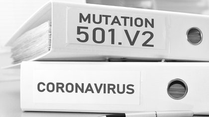 A diferencia de un test de COVID-19 que diagnostica una infección, la secuenciación genética decodifica el genoma del virus SARS-CoV-2 en muestras de pacientes (Foto: Shutterstock)
