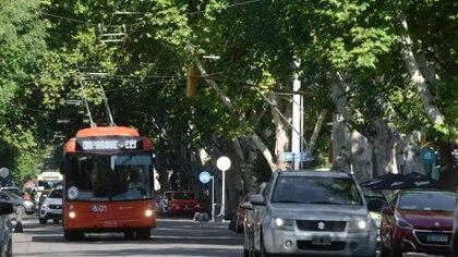 La incorporación de vehículos con baja emisión de gases al sistema de transporte público es una medida importante para contribuir al cuidado del medio ambiente. Foto: Fernando Calzada.