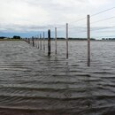 Por las inundaciones, la Bolsa de Cereales de Buenos Aires realizó un ajuste 200 mil hectáreas en su proyección de siembra de soja. (REUTERS/Marcos Brindicci)