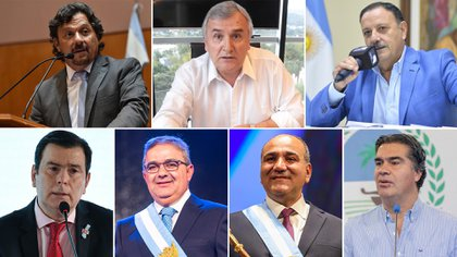 Los gobernadores Gustavo Saenz, Gerardo Morales, Ricardo Quintela, Gerardo Zamora, Raúl Jalil, Juan Manzur y Jorge Capitanich