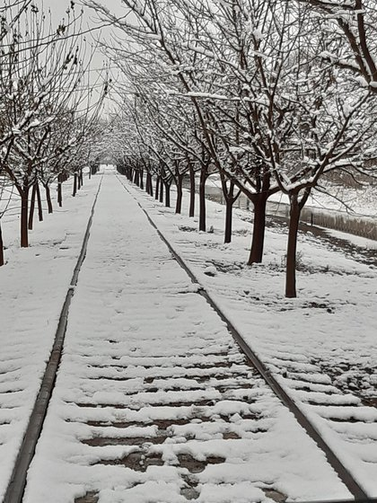 El pronóstico para los próximos días en el norte del país se espera caída de agua nieve y nevadas (Foto: Twitter@ChihuahuaCB)