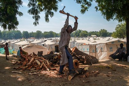 Un residente del campo para desplazados internos en Bama, estado de Borno, Nigeria, corta leña. Es un bien preciado para muchas personas desplazadas en Borno y, a menudo, se intercambia por alimentos y otros artículos esenciales (Scott Hamilton/MSF)