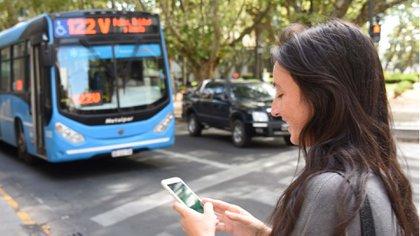 El servicio está caído en ciudades como Rosario, Santa Fe, Córdoba y Mar del Plata, y aún se desconoce cuándo podrán restablecerlo