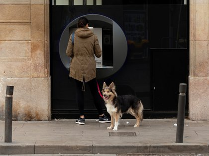 Los perros pueden oír a las personas mucho tiempo antes de poder verlos, y eso es cuando comienza el ladrido (EFE)