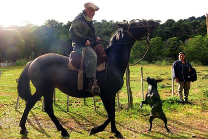 Ya trabajaba en Parques Nacionales y esa vida le gustaba, sin embargo, lo tironeaban otras aventuras. Cuando supo de la insurgencia del EZLN, se propuso ir a México