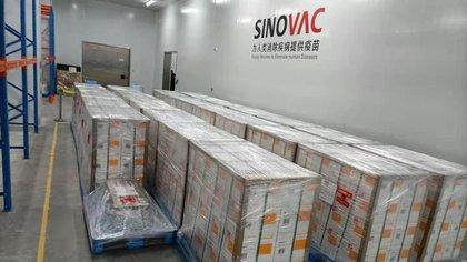 La vacuna de Sinovac está siendo aplicada en países de América Latina