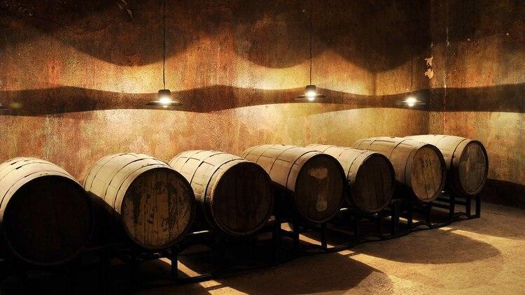 La Finca Don Atilio es el único en la zona. Abrió al turismo hace dos años aproximadamente y a partir de un producto como el vino, crean toda una experiencia turística.