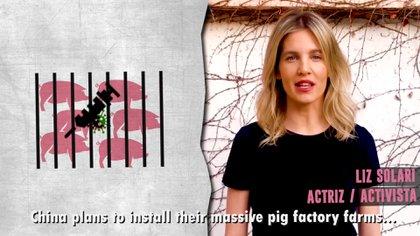 Liz Solari es activista por los derechos de los animales.
