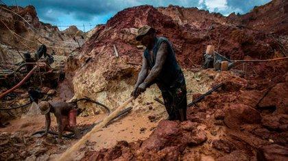 Explotación de oro en Venezuela