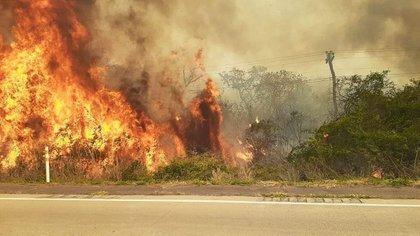 Los incendios en Bolivia