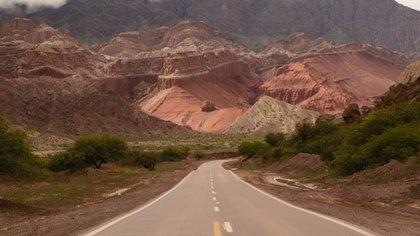 Considerada un joya del norte argentino, Salta está llena de lugares turísticos encantadores, como lo Valles Calchaquíes, para recorrer.
