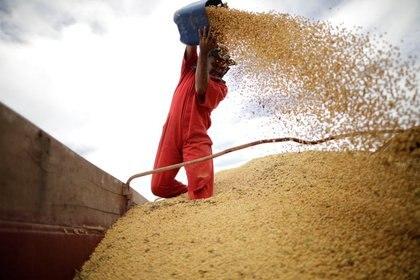"""Pesce reconoció que los mejores precios internacionales empujan las exportaciones pero """"juegan en contra"""" respecto de la inflación REUTERS/Ueslei Marcelino"""