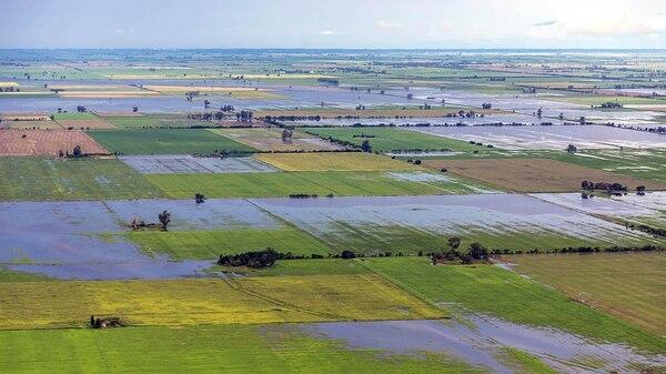 En el Decreto 285 se declaró en situación de desastre a la actividad hortícola de los departamentos y distritos alcanzados por la emergencia agropecuaria.