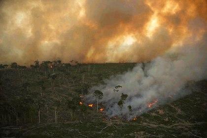 Una imagen de julio de 2020 del incendio forestal en el Amazonas de Brasil (Europa Press)