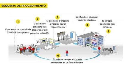 El círculo virtuoso de la donación de plasma para tratar Covid-19, según lo explica el CEMIC (uno de los centros donde se extrae) en su página