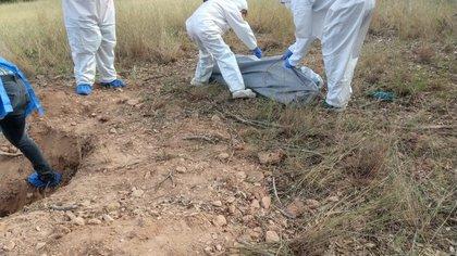Este miércoles 16 de agosto el colectivo Madres Buscadoras de Sonora halló restos humanos en cinco fosas clandestinas en la colonia La Mesa en la frontera de Nogales (Foto: Twitter/buscadorasonora)