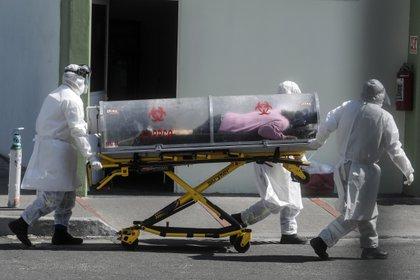 Foto: (PEDRO PARDO / AFP)
