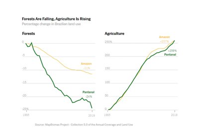 El área de los bosques baja, sube el de la agricultura