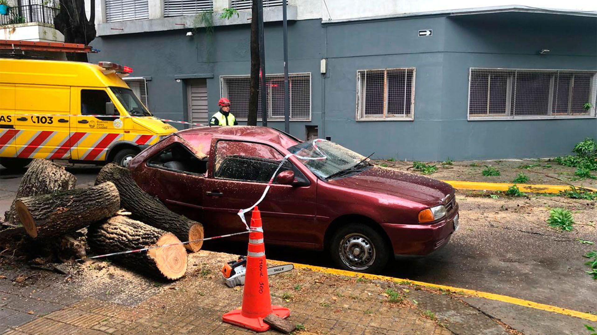 Un VW Gol quedó destruído por la caída de un árbol en Parque Chas