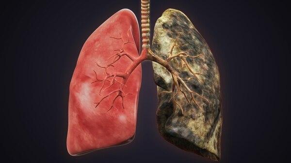 Ultimos Avances en Ciencia y Salud - Página 9 IStock-505050189
