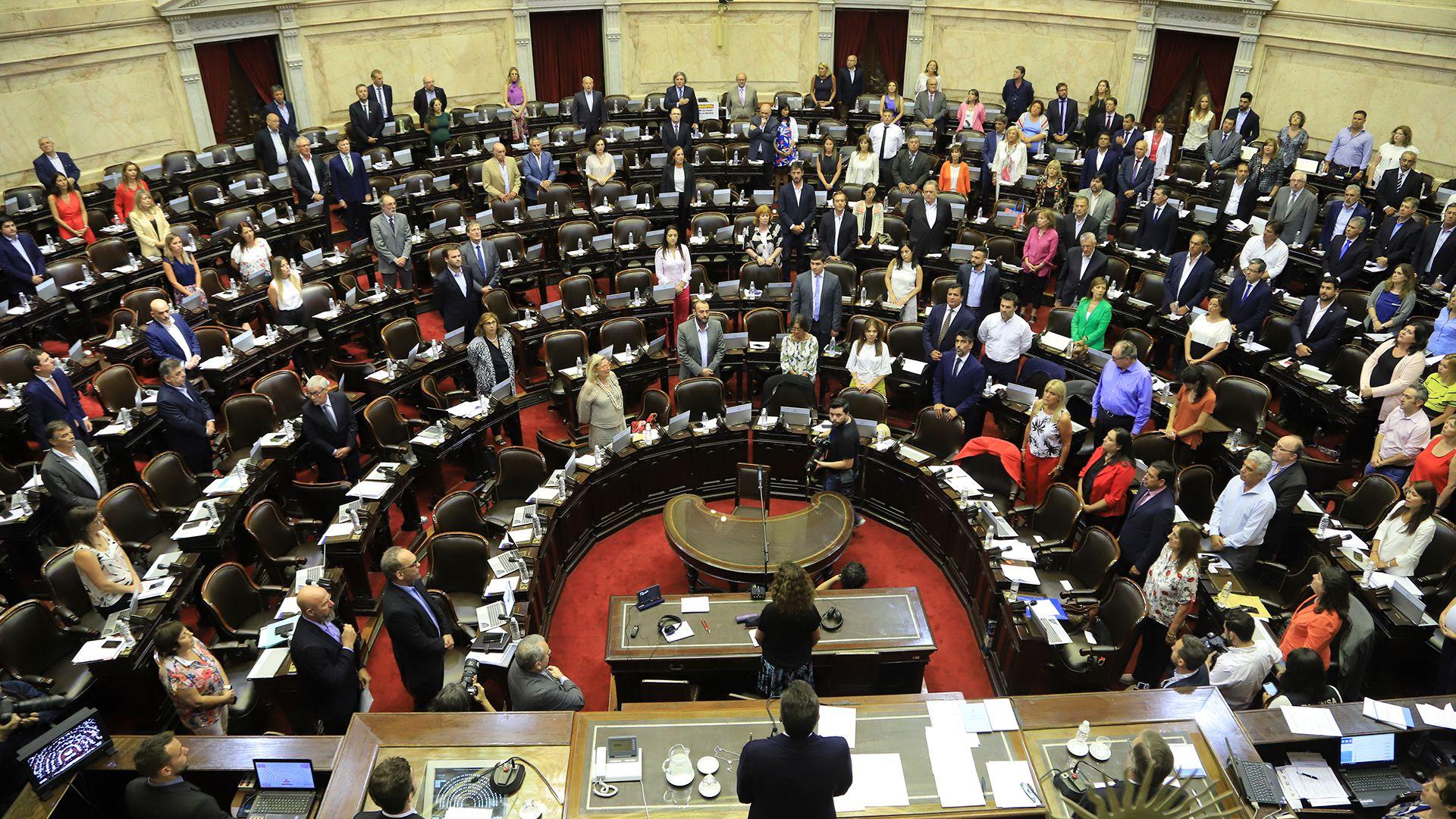 La Cámara de Diputados podrá sesionar en forma remota durante la pandemia (Foto: HUGO VILLALOBOS)